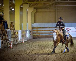 Szkolenie – podstawy jazdy konnej w stylu western